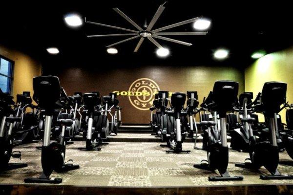 Fitness Center Custom Millwork Gold S Gym Harrisburg Nc