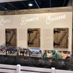 Custom Designed Wall Displays