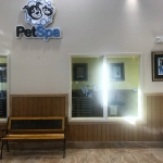 Wainscotting for PetSuites