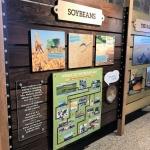 Custom Graphics Display Board
