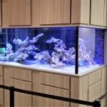 Aquarium Cabinet Surround