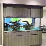 Cabinet Surround for Aquarium